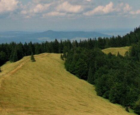 Трахтемиров — сакральное сердце Украины