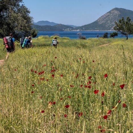 Карийская Тропа, поход вдоль Керамического Залива. Турция.